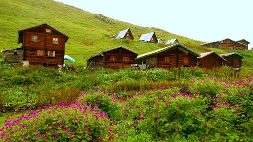 Kaçkar Dağları Milli Parkı
